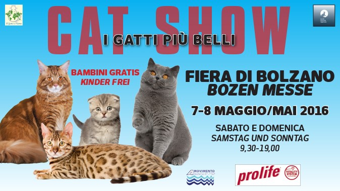 Evento Cat Show Bolzano